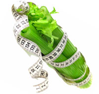 Сельдерей для похудения как употреблять