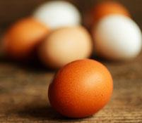 яичная диета на 7 дней отзывы и результаты