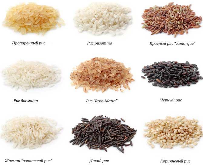 какой рис лучше