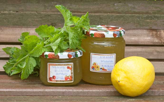 кабачково-лимонный джем с мятой
